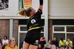 DS-2020-5197: - BentheWismans - Volleybal: Dros Alterno DS 1 Dynamo DS 1 : Apeldoorn